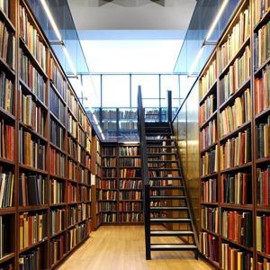 Библиотеки Большого Полпино